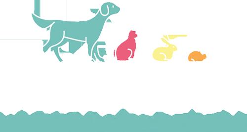 Sandbeck Vets logo reverse
